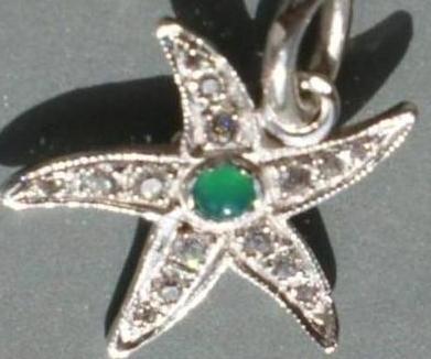 Morská hviezdička  67427b56bfd